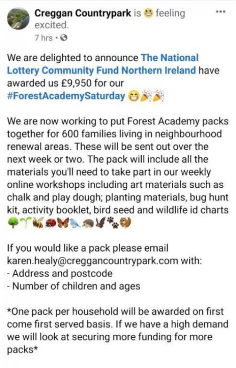 Forest Academy Packs